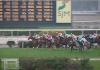 澳門賽馬會專營批給合同獲延期24年半