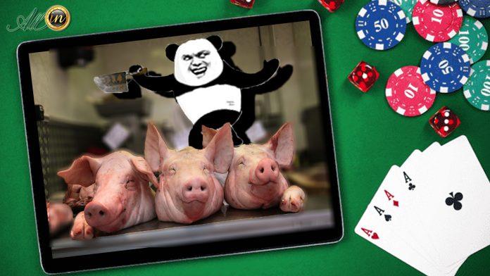 澳門首季網騙大幅上升 殺豬盤案按年增兩倍涉款逾千萬